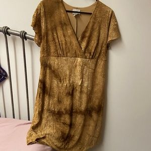 Lowcut Brown Dress